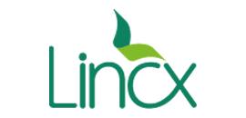 Amil Lincx LT3